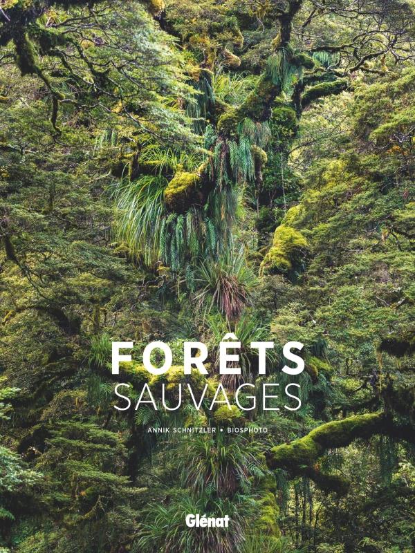 Forêts de la nuit - roman.