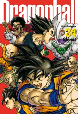 Dragon Ball perfect edition - Tome 34