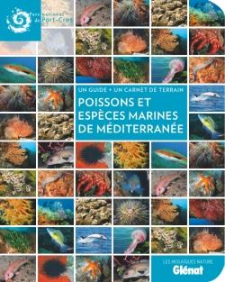 Poissons et espèces marines de Méditerranée