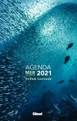 Agenda mer 2021