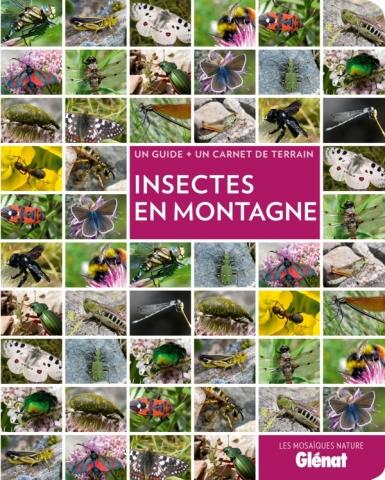 Insectes en montagne