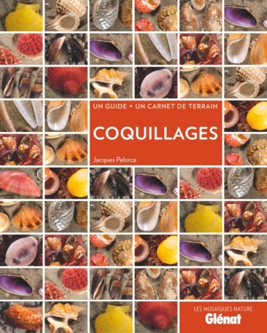 Coquillages